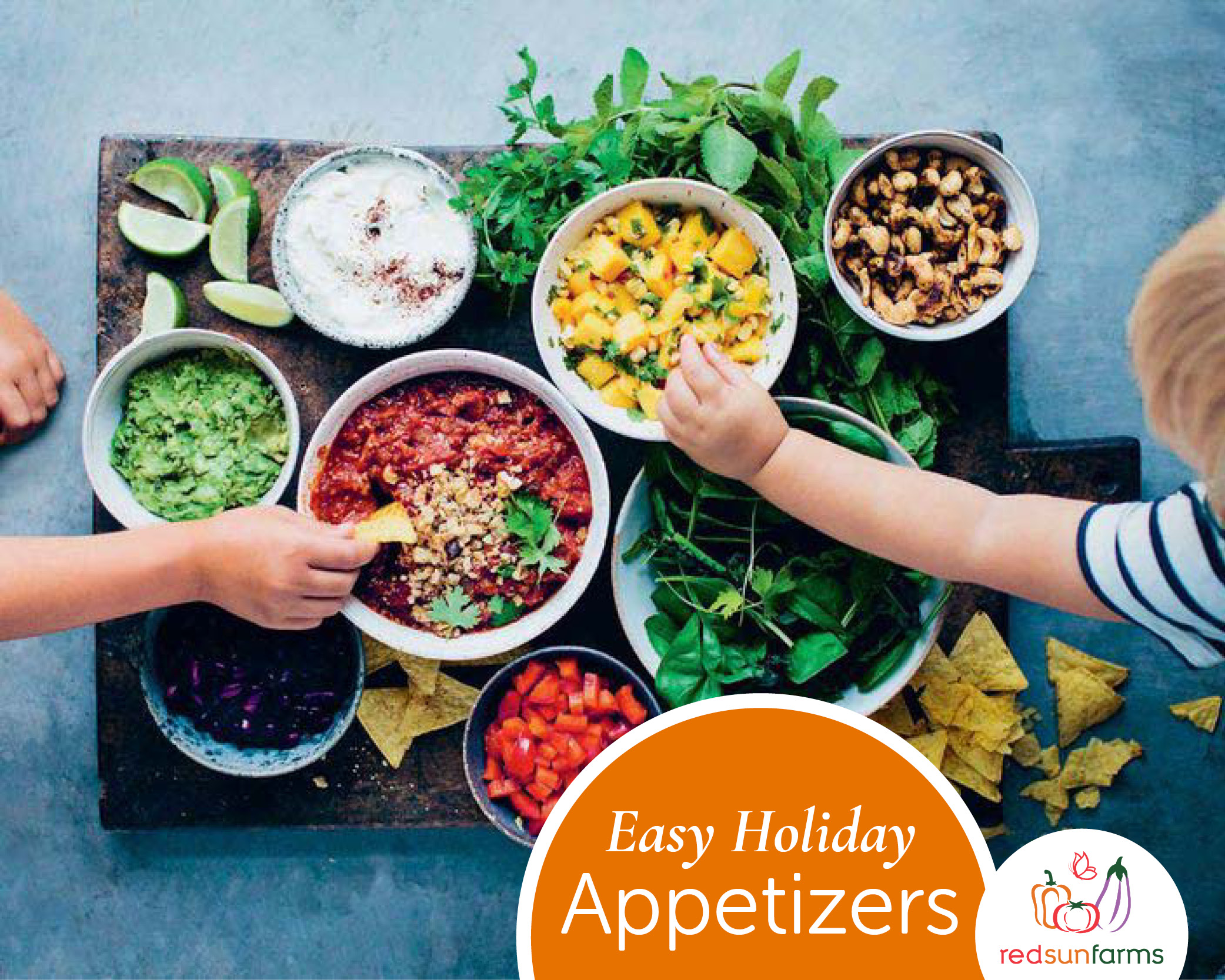 Easy Holiday Appetizers