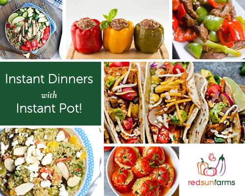 Instant Dinners with Instant Pot