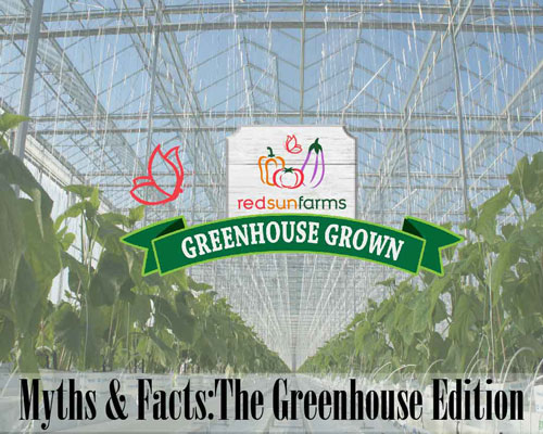 Myths & Facts: Greenhouse Edition